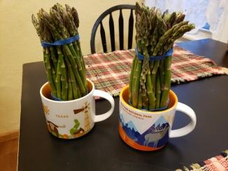 Asparagus Soup Bunches
