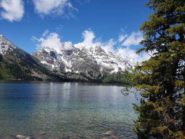 Jenny Lake 2019